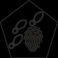 Detektyw - Zbieranie dowodów I.1.17